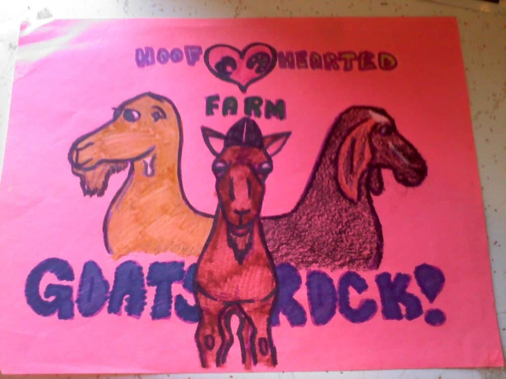 "A pink piece of printer paper with three goats drawn on it, and ""GOATS ROCK!"" in all caps. Top is captioned with 'Hoof Hearted Farm"""